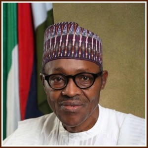 Pres Buhari's first year review