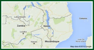Malawi with its neighbors. It's a long narrow country.